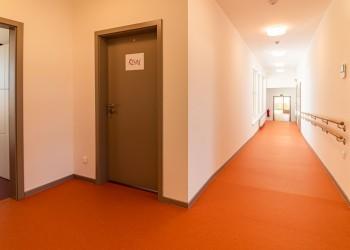 P1566233-Velke