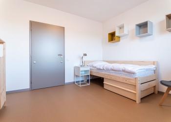 P1566269-Velke